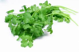 CORIANDER SEED OIL (INDIAN)